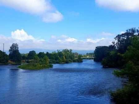 Willamette River—Eugene/Springfield